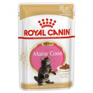 Royal Canin Kitten Maine Coon, Пауч для котят, в возрасте от 3 до 15 месяцев