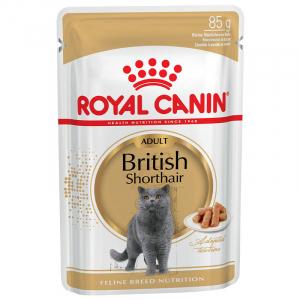 Royal Canin British Shorthair Adult (в соусе)