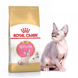 Корм для котят породы сфинкс, Royal Canin Kitten Sphynx, в возрасте от 4 мес  и старше